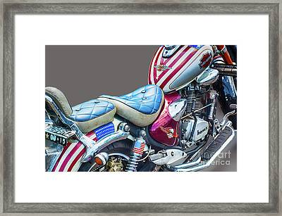 Framed Print featuring the photograph Harley by Charuhas Images
