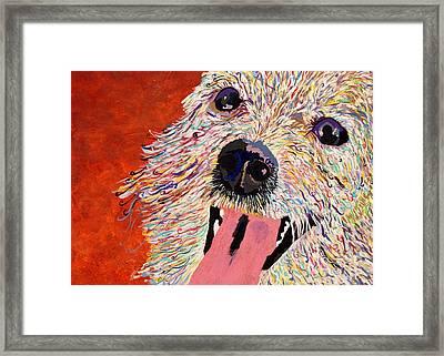 Harley Pup Framed Print by Debbie Davidsohn