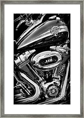 Framed Print featuring the photograph Harley  by Tim Gainey