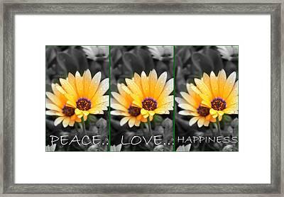 Framed Print featuring the photograph Harmony Among The Flowers by Amanda Eberly-Kudamik