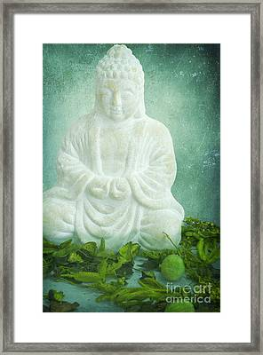 Harmony Framed Print by Angela Doelling AD DESIGN Photo and PhotoArt