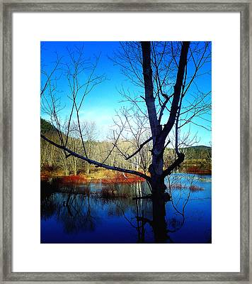 Harmony At Rumford Center Framed Print