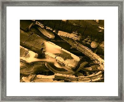 Harmony I I Framed Print