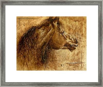 Harmony Framed Print by Paula Collewijn -  The Art of Horses