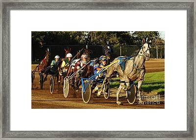 Harness Racing 11 Framed Print by Bob Christopher