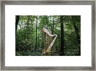 Harp In The Woods Framed Print