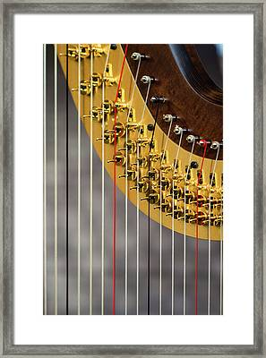 Harp Strings Framed Print