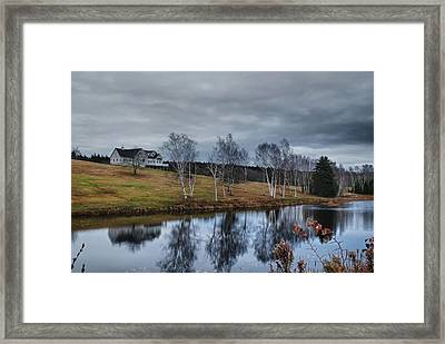 Harpswell Birches 14399 Framed Print by Guy Whiteley