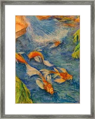 Harriden Koi Framed Print by Sand And Chi