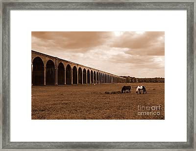 Harringworth Viaduct And Horses Grazing Framed Print by Louise Heusinkveld