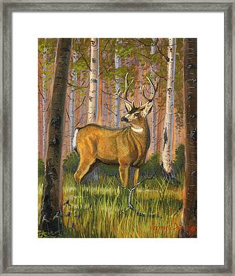 Hart Of The Forest Framed Print by Jeff Brimley
