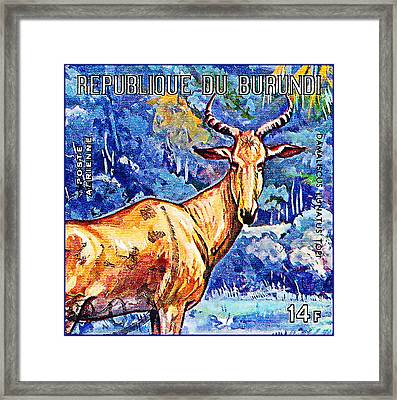 Hartebeest Framed Print by Lanjee Chee