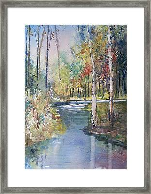 Hartman Creek Birches Framed Print