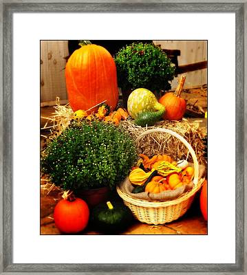 Harvest Framed Print by Bill Cannon