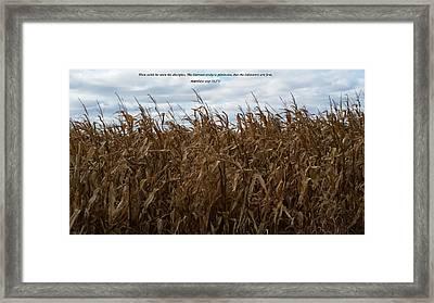 Harvest Framed Print by Cliff Ball