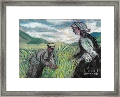 Harvest Framed Print by Duygu Kivanc