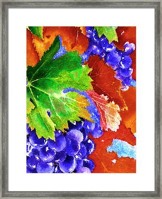 Harvest Grapes - Impressionist Digital Painting Framed Print