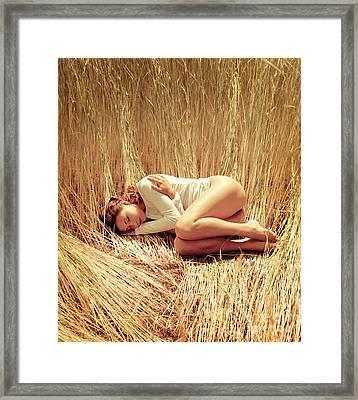 Harvest Framed Print by Mark Avgust