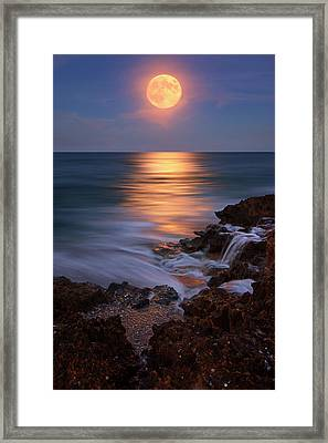 Harvest Moon Rising Over Beach Rocks On Hutchinson Island Florida During Twilight. Framed Print by Justin Kelefas