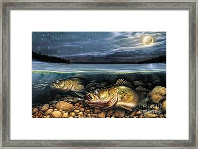 Harvest Moon Walleye 1 Framed Print by JQ Licensing