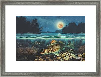 Harvest Moon Walleye 3 Extended Version Framed Print