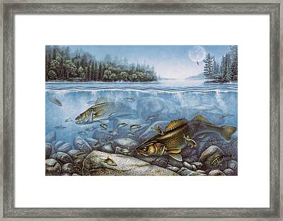 Harvest Moon Walleye II Framed Print by JQ Licensing