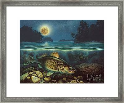 Harvest Moon Walleye IIi Framed Print by JQ Licensing