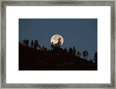 Harvest Moonset Framed Print by Donna Kennedy