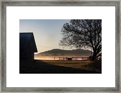 Harvest Of Light Framed Print