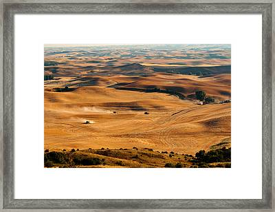 Harvest Overview Framed Print by Mary Jo Allen