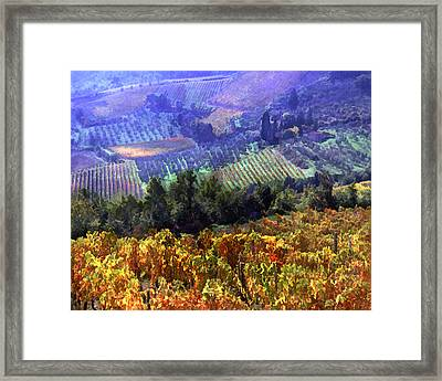 Harvest Time At The Vineyard Framed Print by Elaine Plesser