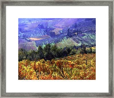 Harvest Time At The Vineyard Framed Print by Elaine Plesser