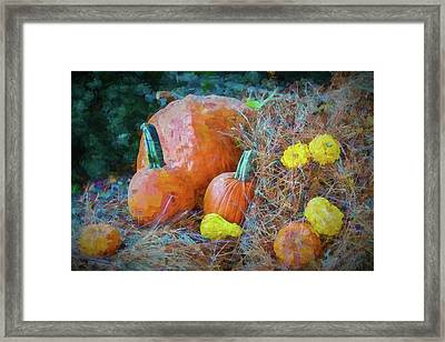 Harvest Time Framed Print