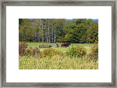 Harvest Time Framed Print by David Lee Thompson