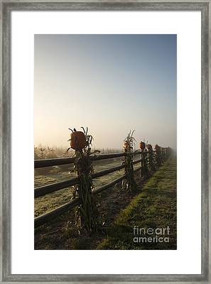 Harvest Time Framed Print by Jim Corwin