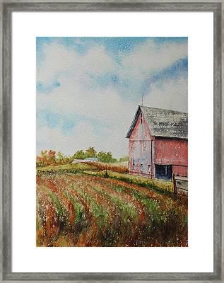Harvest Time Framed Print by Mike Yazel
