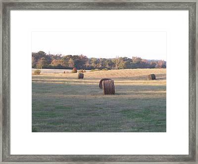 Harvest Time Framed Print by Paula Ferguson