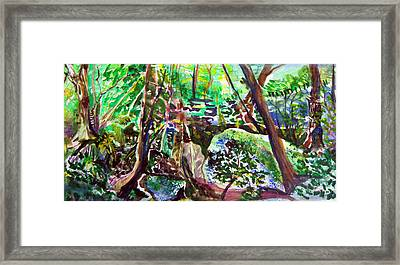 Hasack Cave In Ohio Framed Print by Mindy Newman