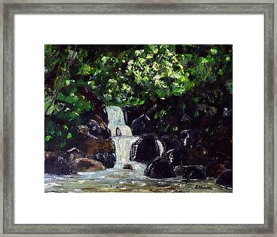 Hatcher Pass Creek Framed Print