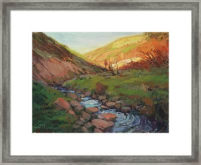 Hatley Gulch Framed Print