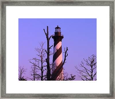 Hatteras Light And Tree Framed Print