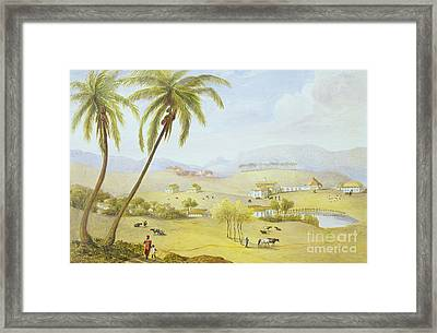 Haughton Court - Hanover Jamaica Framed Print by James Hakewill
