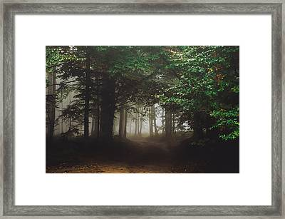 Haunted Forest #2 Framed Print