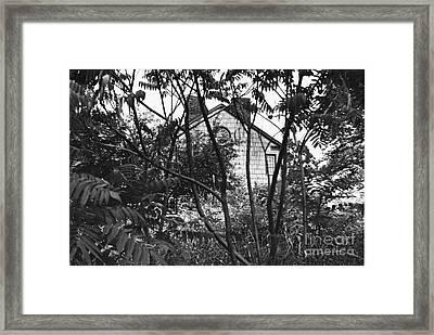 Haunted Framed Print by Kathryn Donatelli