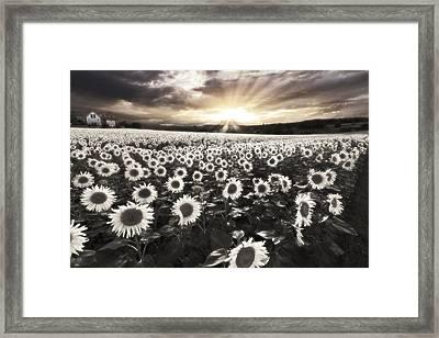 Haunting Framed Print by Debra and Dave Vanderlaan