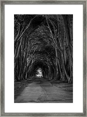 Haunting II Framed Print by Jon Glaser