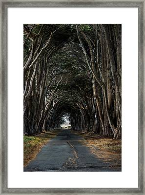 Haunting Framed Print by Jon Glaser