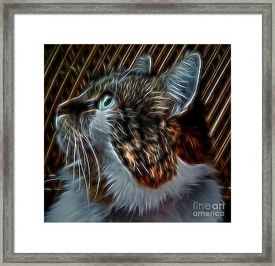 Haunting Stare Framed Print