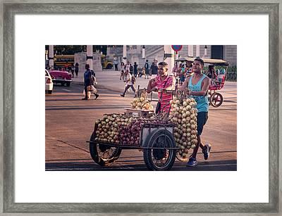 Framed Print featuring the photograph Havana Cuba Onion Cart by Joan Carroll