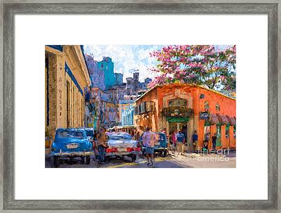 Havana In Bloom Framed Print